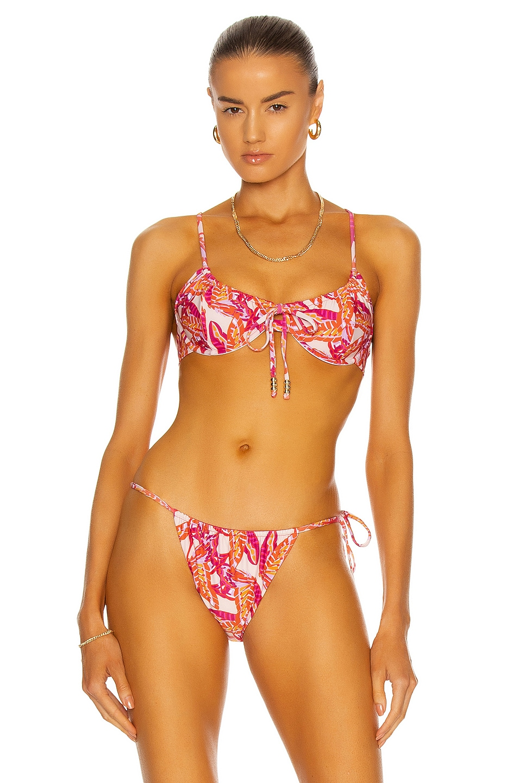 Image 1 of Palm Viper Bikini Top in Butterfly