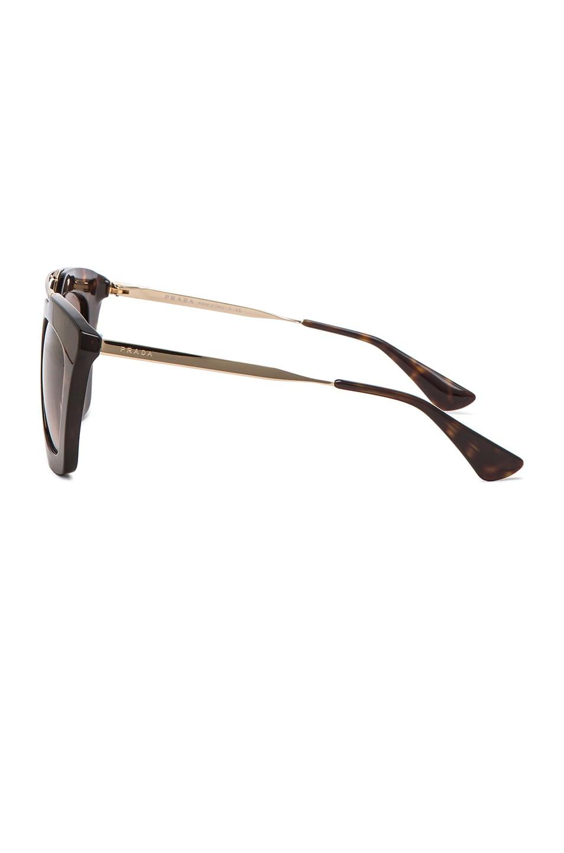 Image 3 of Prada Cat Eye Sunglasses in Havana