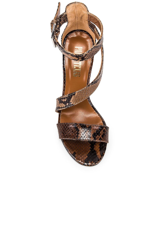 Image 4 of Paris Texas Diagonal Strap Snake 80 Sandal Heel in Brown & Nude