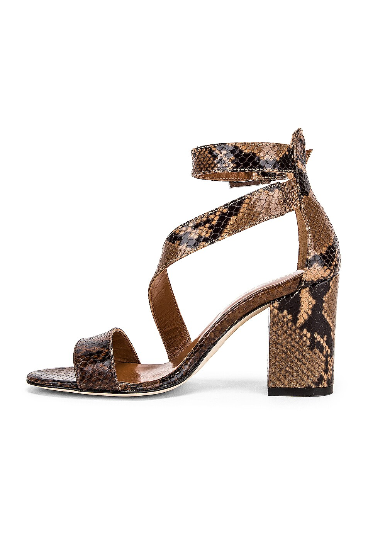 Image 5 of Paris Texas Diagonal Strap Snake 80 Sandal Heel in Brown & Nude