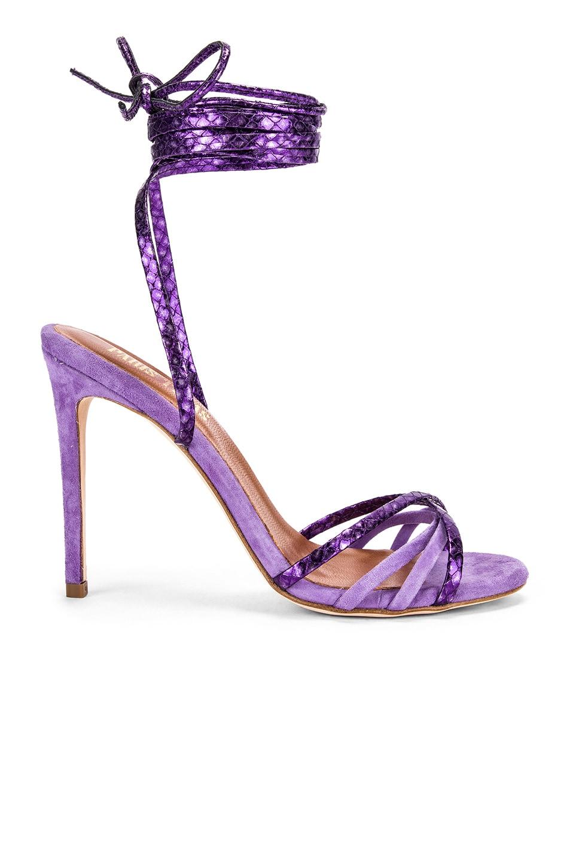 Image 1 of Paris Texas Suede and Metallic Wrap Stilettos in Lilac & Violet