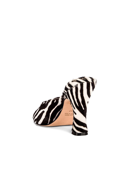 Image 3 of Paris Texas Pony Square Toe Mule in Black & White Zebra