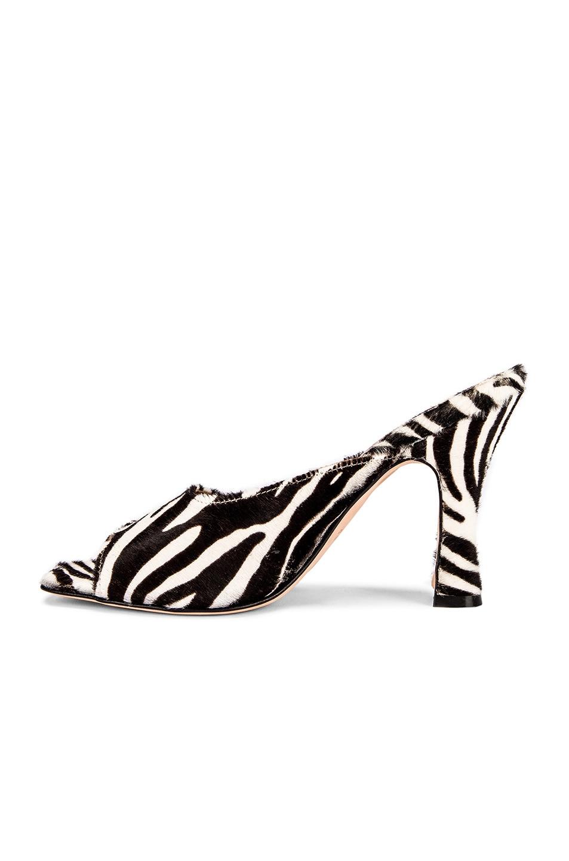 Image 5 of Paris Texas Pony Square Toe Mule in Black & White Zebra