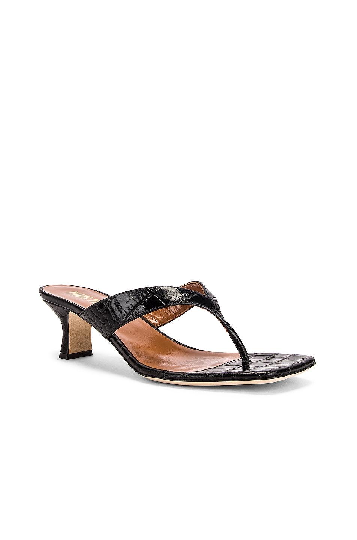 Image 2 of Paris Texas Moc Croco 45 Thong Sandal in Black