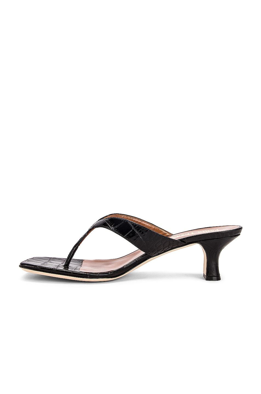 Image 5 of Paris Texas Moc Croco 45 Thong Sandal in Black