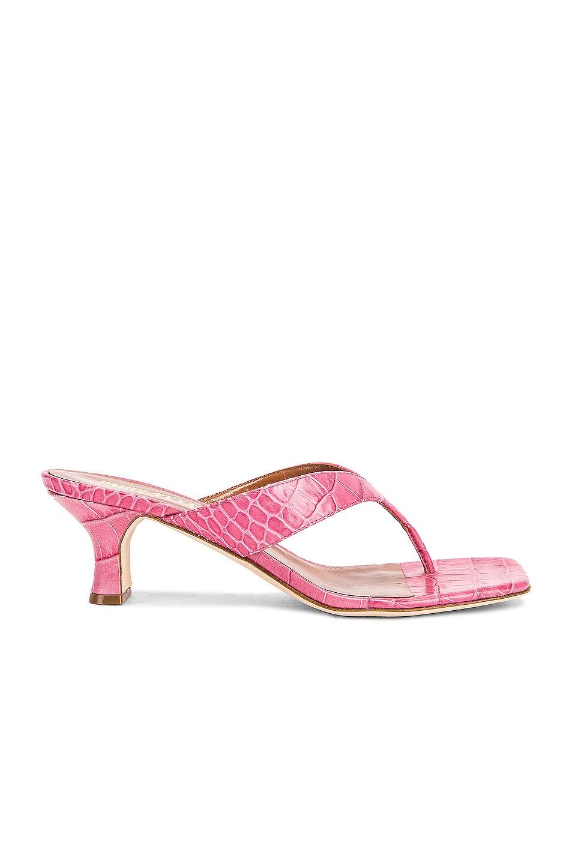 Image 1 of Paris Texas Moc Croco 45 Thong Sandal in Fuchsia