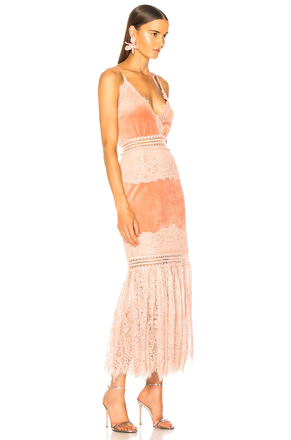Image 2 of PatBo Lace & Velvet Dress in Dusty Rose