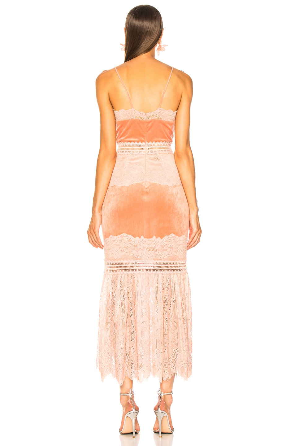Image 3 of PatBo Lace & Velvet Dress in Dusty Rose