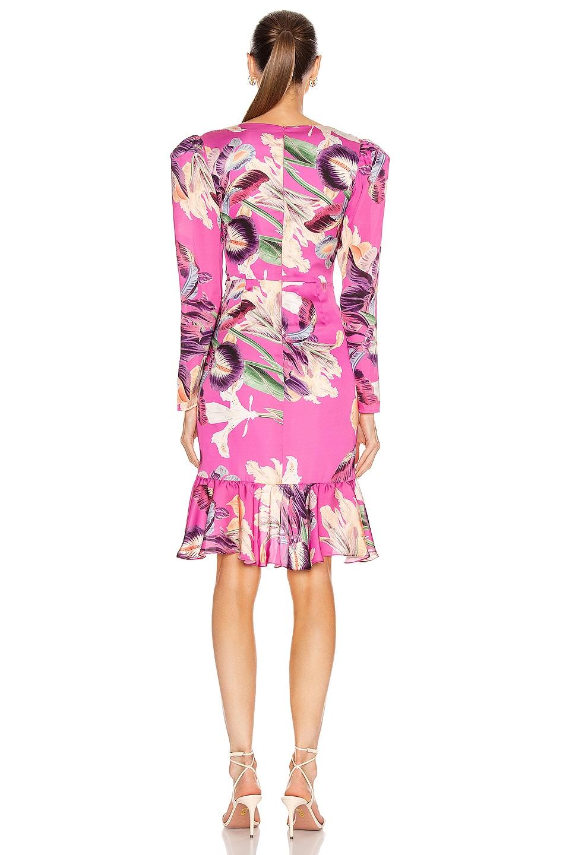 Image 3 of PatBO Grace Print Knee Length Dress in Fuchsia