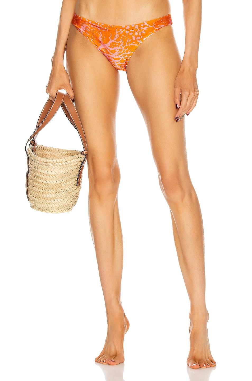 Image 1 of PatBO Coral Bikini Bottom in Coral
