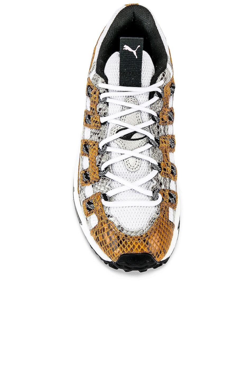 Image 4 of Puma Select Cell Endura Animal Kingdom in Puma White & Golden Orange