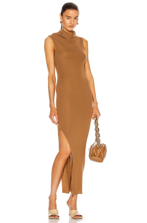 Image 1 of Rick Owens Sleeveless Cowl Neck Dress in Honey
