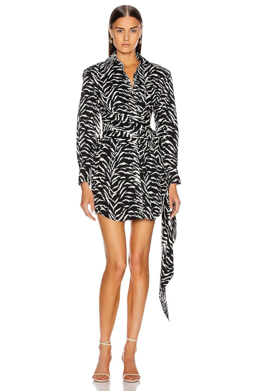 Image 1 of Redemption Zebra Printed Shirt Dress in Black & White Zebra