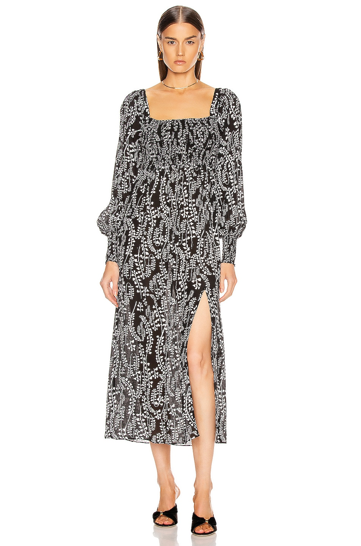 Image 1 of RIXO Marie Dress in Tree Roots Black & Cream