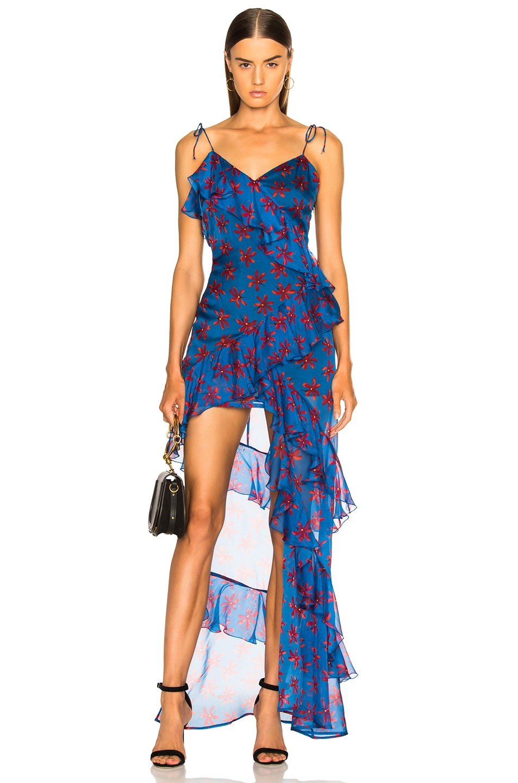 Image 1 of RAQUEL DINIZ Stella Dress in Blue Print