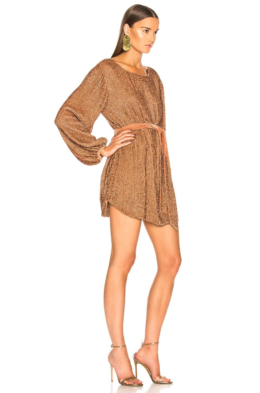 Image 2 of retrofete Grace Dress in Bronze