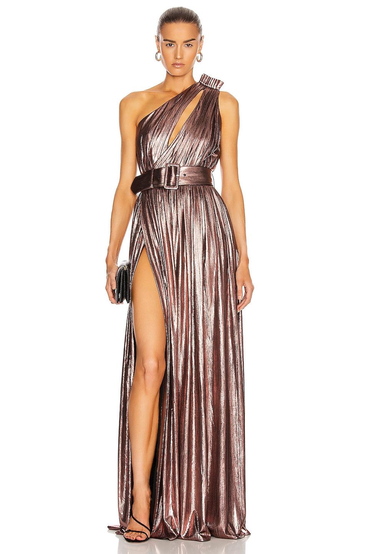 Image 1 of retrofete Andrea Maxi Dress in Rose Gold