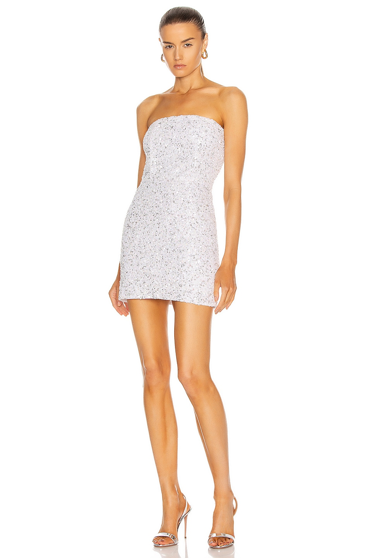 Image 1 of retrofete Heather Dress in Silver & White