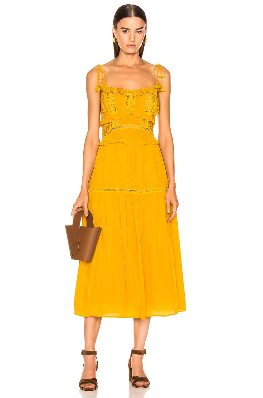 Image 1 of Sea Poppy Pintuck Sleeveless Dress in Mustard