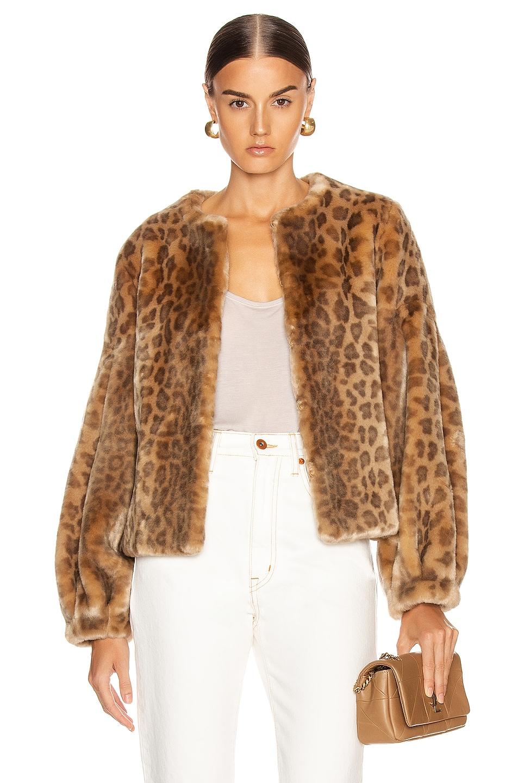 Image 1 of Shrimps Fergal Faux Fur Coat in Natural Leopard