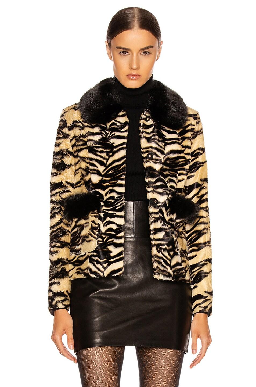 Image 1 of Shrimps Duke Faux Fur Coat in Tiger & Black