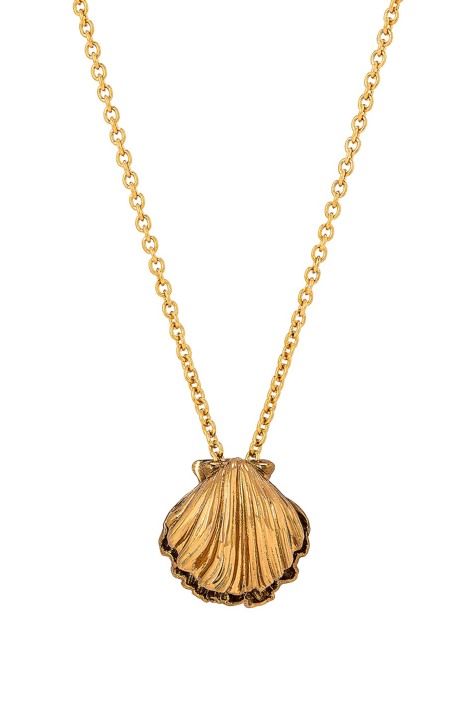 Image 1 of Saint Laurent Seashell Charm Long Necklace in Laiton Gold & Amber Gold