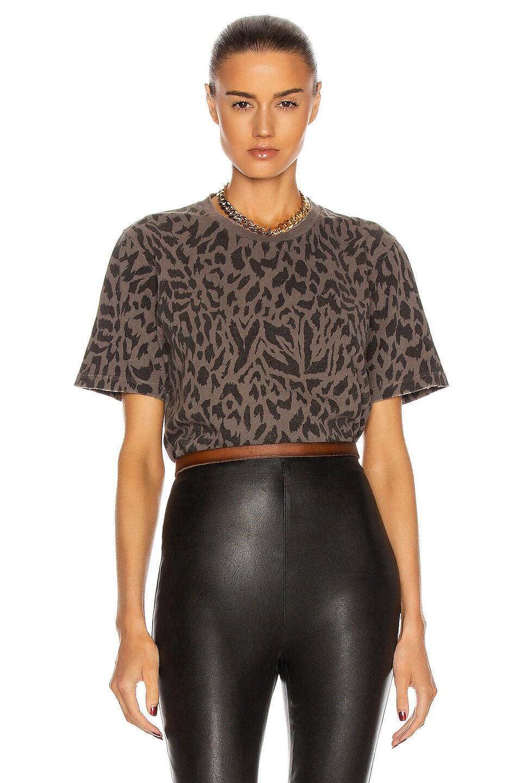 Image 1 of Saint Laurent Leopard T Shirt in Gris Blanchi & Noir