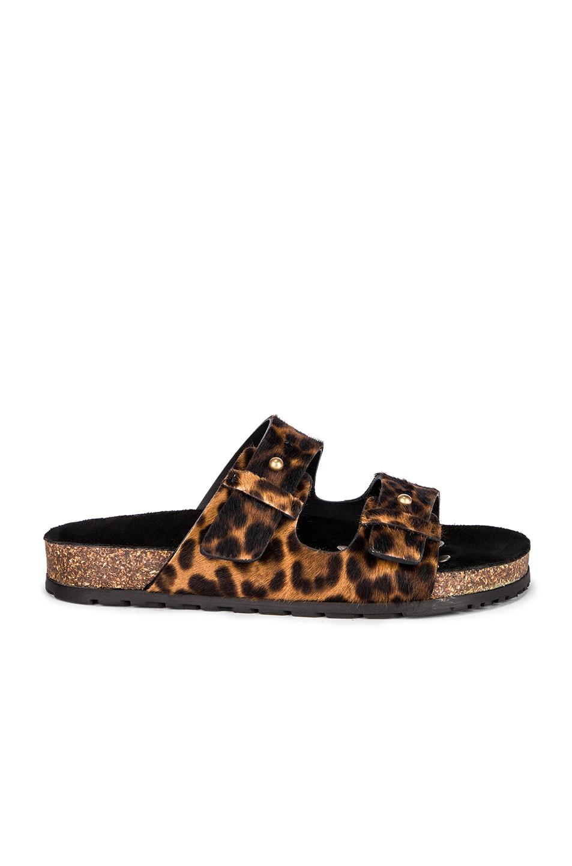 Image 1 of Saint Laurent Leopard Jimmy Slide in Natural