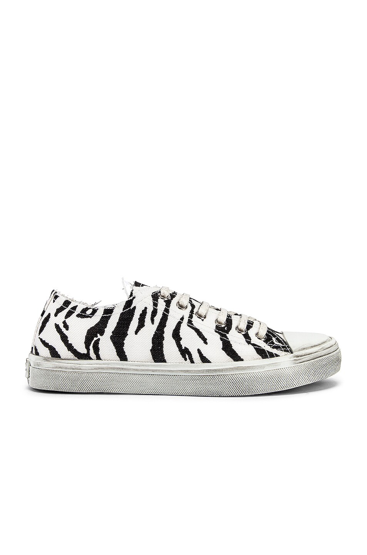 Image 1 of Saint Laurent Bedford Low Top Sneakers in White & Black
