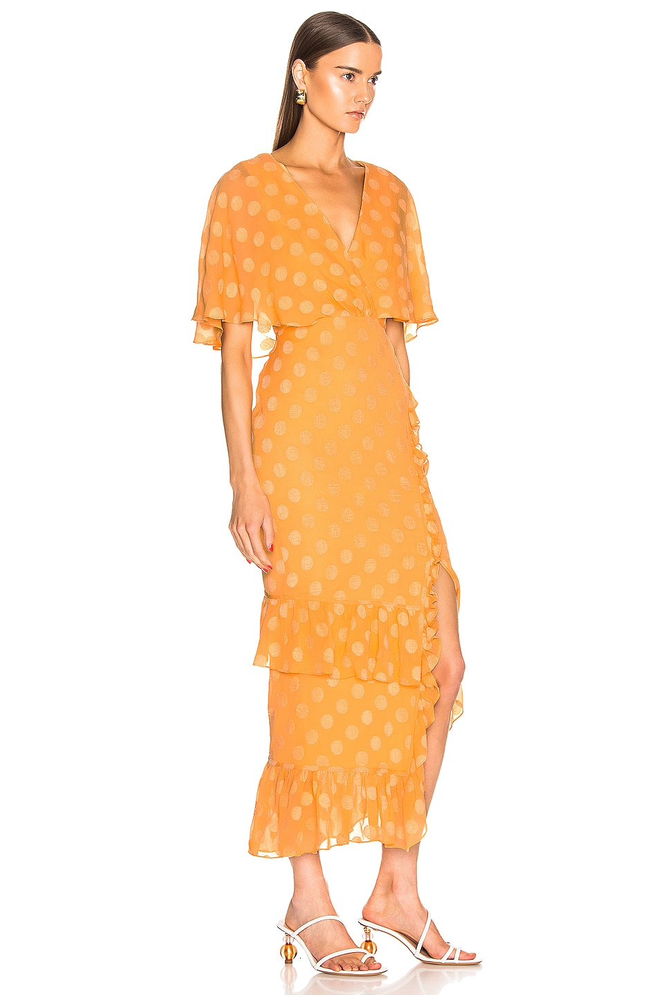 Image 2 of SALONI Rose Dress in Apricot