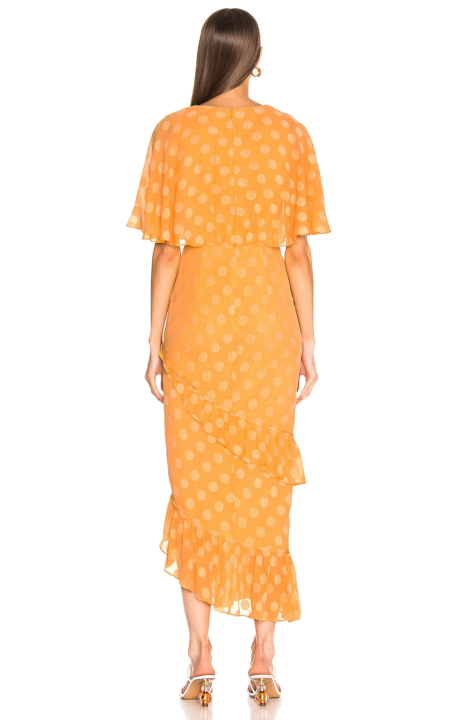 Image 4 of SALONI Rose Dress in Apricot