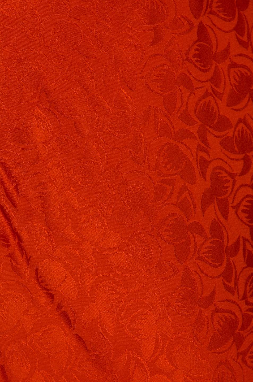 Image 4 of SALONI Alena Midi Dress in Bitter Orange