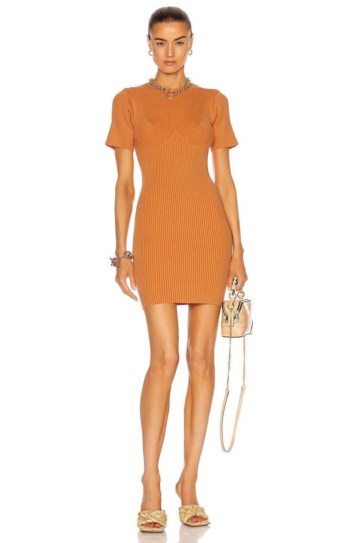 Image 1 of Stella McCartney Bustier Shaping Dress in Carrot