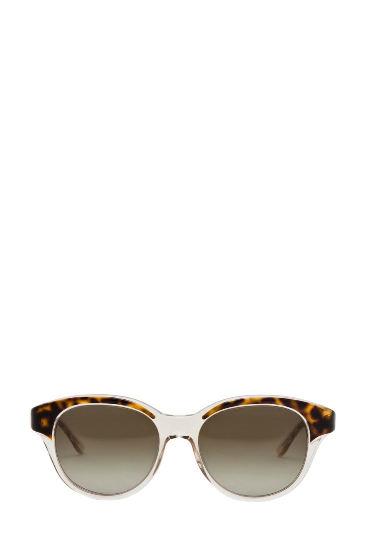 Image 1 of Stella McCartney Sunglasses in Havana & Transparent Yellow