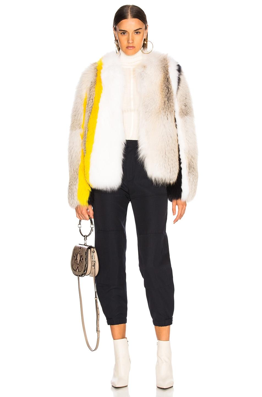 Image 5 of Sprung Cesar Fur Jacket in Multi