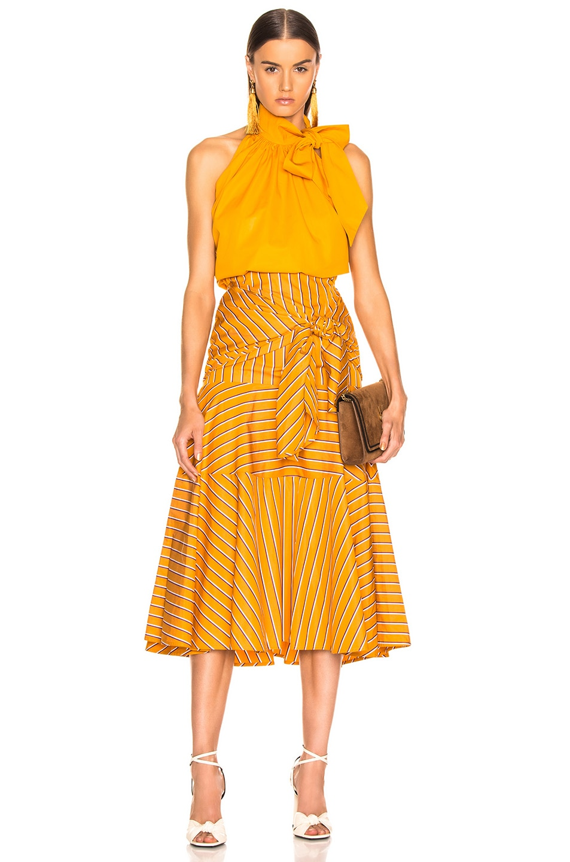 Image 4 of SILVIA TCHERASSI Fucsia Skirt in Apricot Stripes