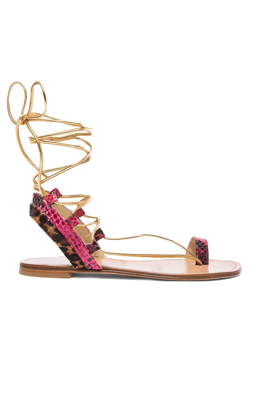 Image 1 of Stuart Weitzman Lasso Sandals in Gold