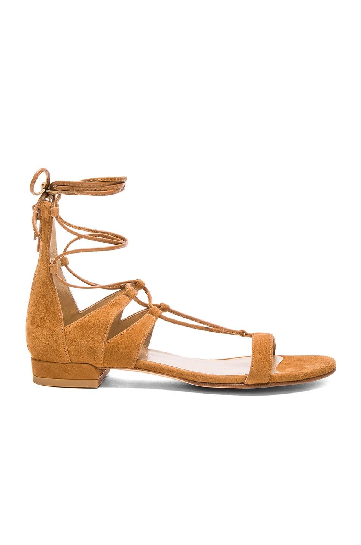 2c4b84415d6c Image 1 of Stuart Weitzman Suede Tie Up Sandals in Camel Suede