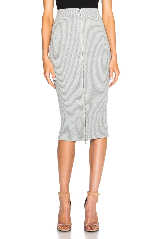 5 Pocket Zip Skirt in Black Alexander Wang Cheap Sale Outlet Locations Rfaax7