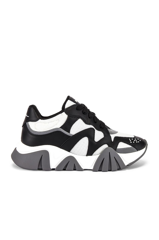 Image 2 of VERSACE Sneaker in Black & White & Silver