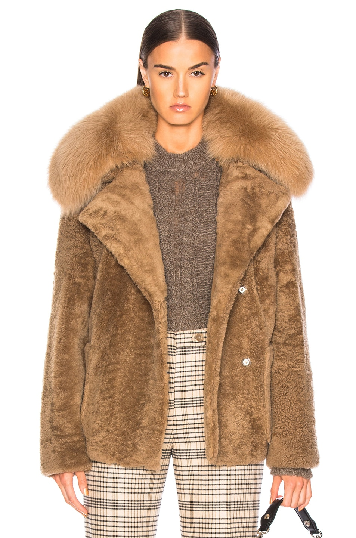 Image 1 of Yves Salomon Curly Merinillo Fur Jacket in Sarrasin