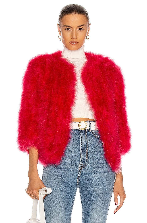 Image 1 of Yves Salomon Feather Jacket in Glamorous