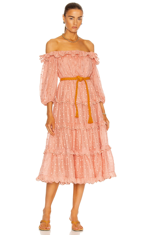 Image 1 of Zimmermann Mae Dot Midi Dress in Musk