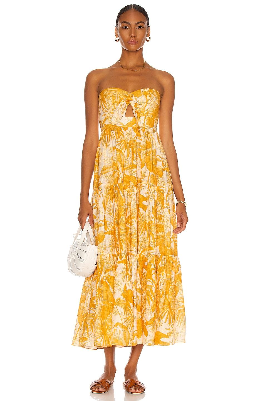 Image 1 of Zimmermann Mae Tie Midi Dress in Amber Palm