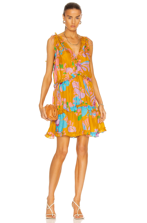 Image 1 of Zimmermann Teddy Draw Frill Mini Dress in Mustard Floral
