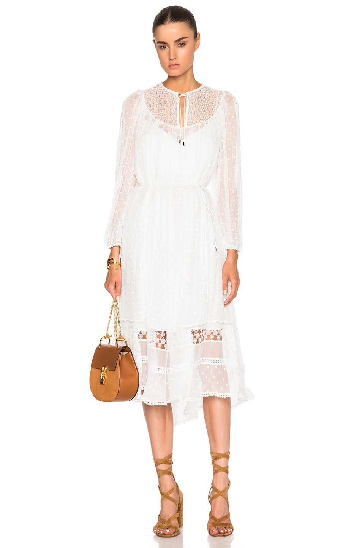 dd03024feace Image 1 of Zimmermann Belle Web Dot Dress in White