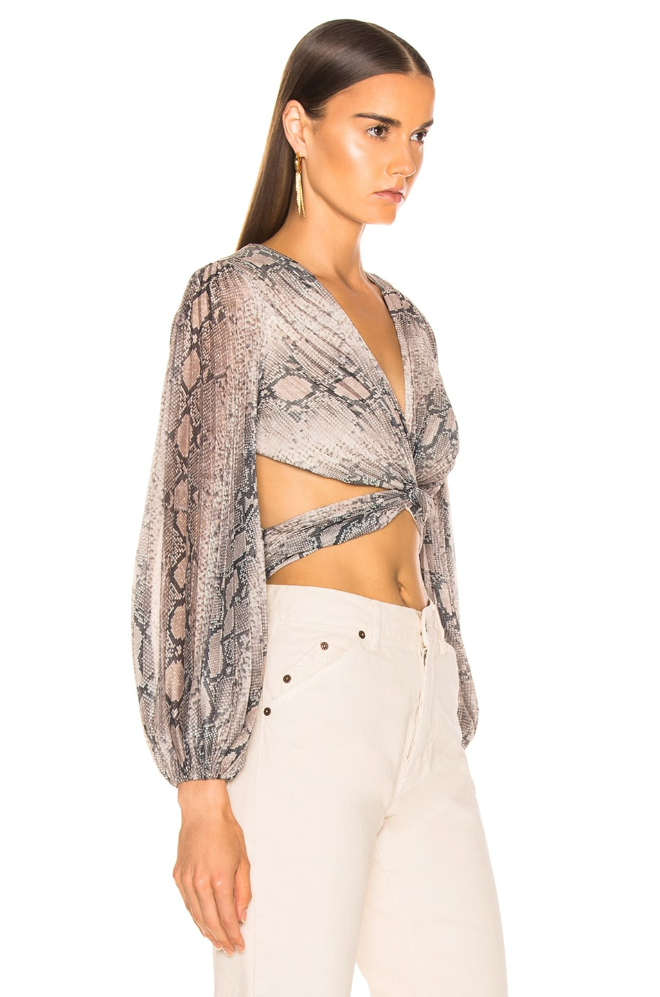 Image 2 of Zimmermann Corsage Pleat Bodice Top in Python