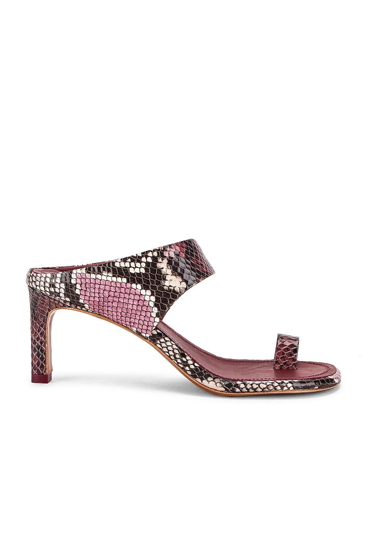 Image 1 of Zimmermann Strap Sandal in Burgundy Python