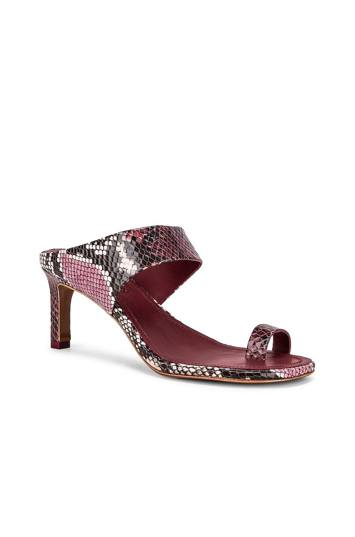 Image 2 of Zimmermann Strap Sandal in Burgundy Python