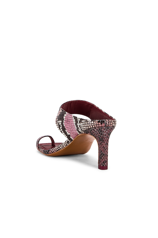 Image 3 of Zimmermann Strap Sandal in Burgundy Python